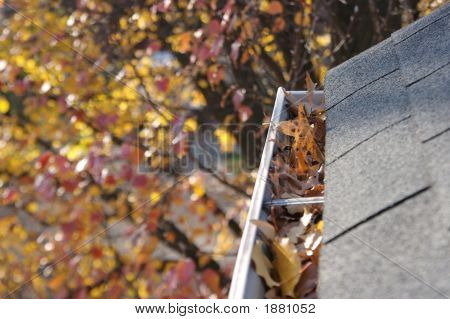 Fall Cleanup - Leaves In Gutter