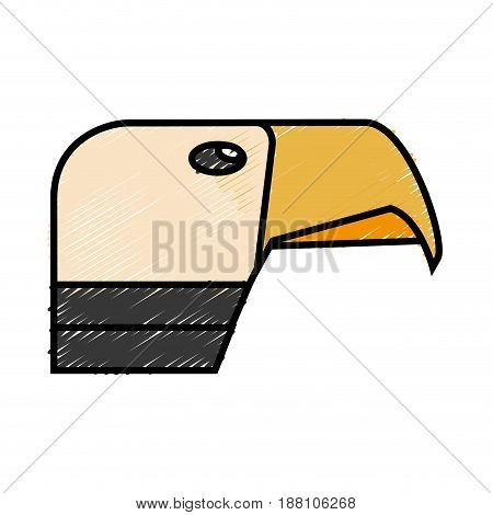 hawk icon over white background. vector illustration