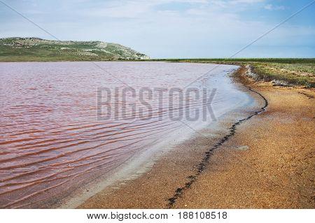 Koyashskoe Pink Lake In The Opuk Reserve In Crimea