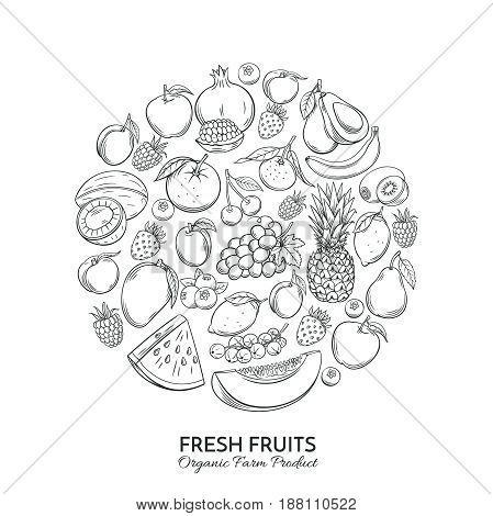 Poster round composition with hand drawn fruits for farmers market menu design. Healthy food concept. Vector vintage illustration.