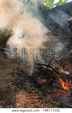Dry leaves burning with red yellow flames in a pit giving out smoke