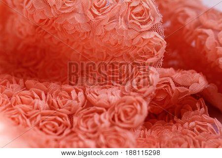 Peach -colored roses material - macro photo