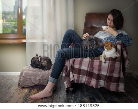 The girl in the chair by the window drinking coffee. Pets - cats and a dog