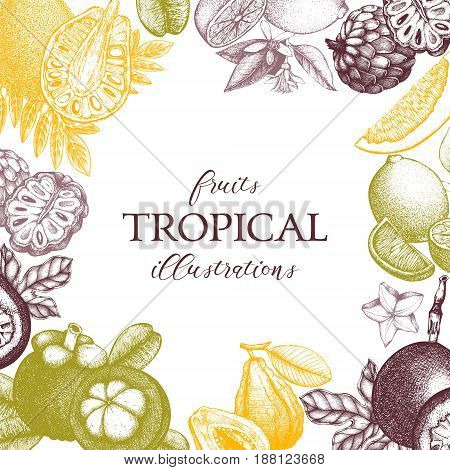 Vector card design with hand drawn tropical fruits illustration. Decorative inking background with vintage exotic plants sketch. Sketched template