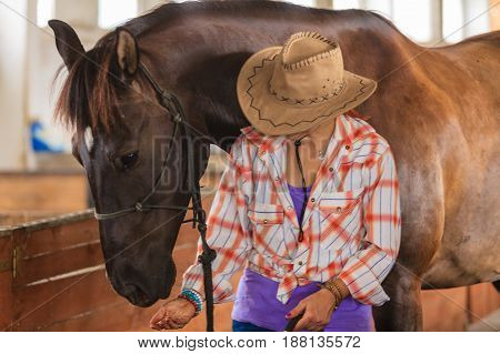 Taking care of animals love and friendship concept. Cowgirl in checkered shirt and cowboy hat leading brown horse in stable