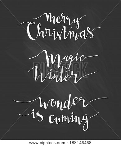 Merry Christmas greeting lettering. Season vector holiday design of phrases. Vector Handwritten text. Calligraphy collection on the black chalkboard.