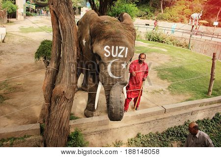 Elephant SUZI and trainer in the Lahore Zoo Punjab Pakistan 24/03/2016