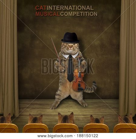 The cat violinist is on the stage.