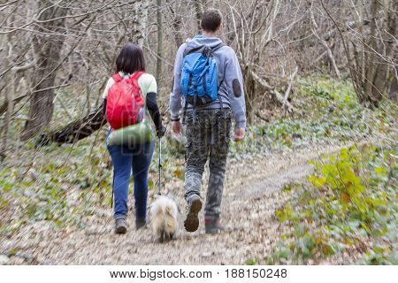 Young couple with a dog walking in the woods blurred motion