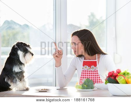 Woman And Dog Having Lunch