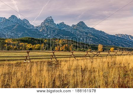 a scenic autumn landscape in the Tetons of Wyoming