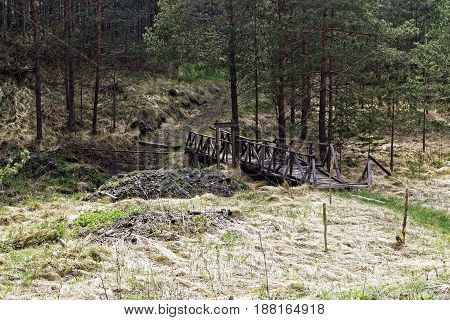 Old wooden bridge in nature near forest
