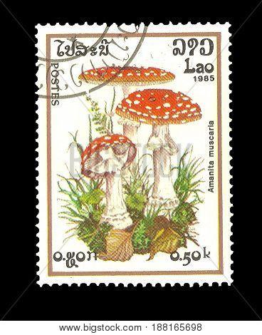 Postage Stamp : Laos 1985 AMANITA MUSCARIA. Scott 848