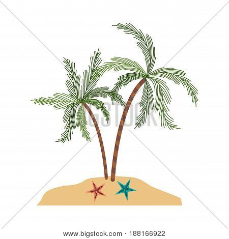 color silhouette of island with palm trees and starfish vector illustration