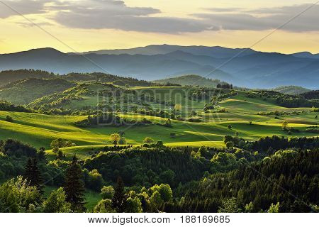Spring forest and meadows landscape in Slovakia. Evening scenery panorama. Fresh trees and pastures. Sunlit country.