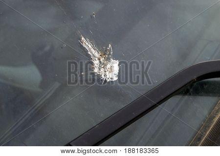 Infecting the car window with bird ridges,Bird scum on the car's window,