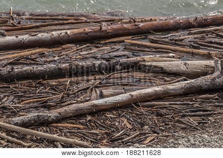 Tree trunks and other bits of wood close to shore on Ghost Lake in Alberta Canada.