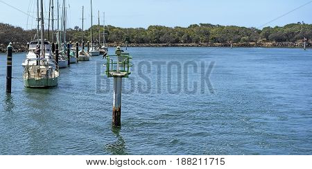 Mooloolah River with green starboard channel marker showing navigable water and moored yachts and boats