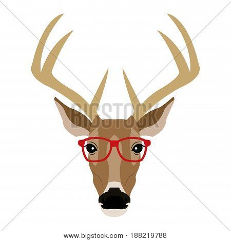 portrait deer hipster style glasses vector illustration