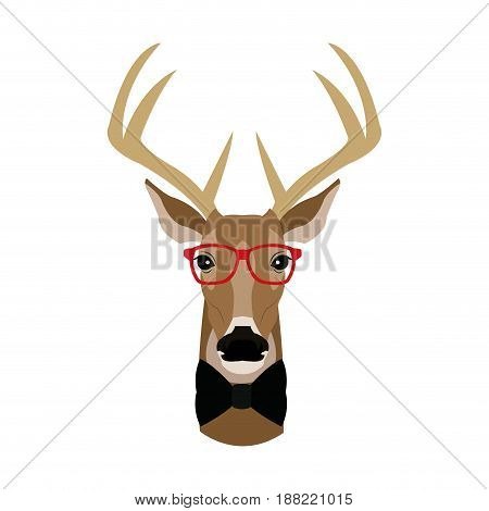 portrait deer hipster style glasses vector illustration