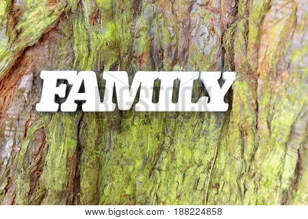 White family sign on green tree trunk texture. Family tree concept background