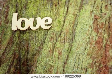 Wooden love sign on tree trunk texture with copy space