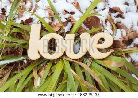 Wooden love sign outdoor on the ground with green grass and snow. Spring concept. Top view. Flat lay