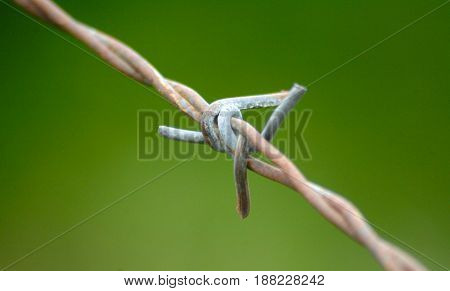 Image Of A Barbed Wire