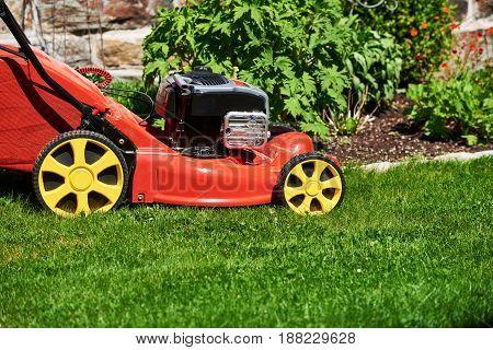 Lawn mower detail on fresh green grass