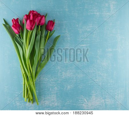 Red Tulips on Weathered Aqua Background with copy space to right
