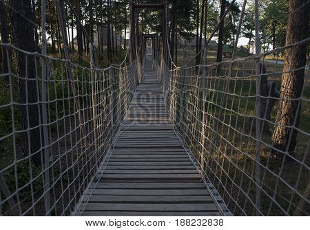 wooden rope bridge in the forest, day time