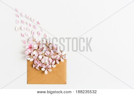close up of opened craft paper envelope full of spring blossom sakura flowers on white background. top view. concept of love. womens day. 8 of march. mothers day. Empty space for the text.