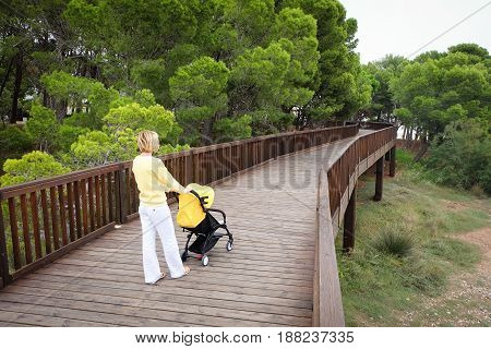 Young mother pushing a stroller on wooden bridge in the park. Green trees on background