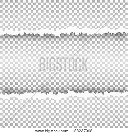 ripped paper with transparent background. Snatched window in sheet of paper. Vector illustration.