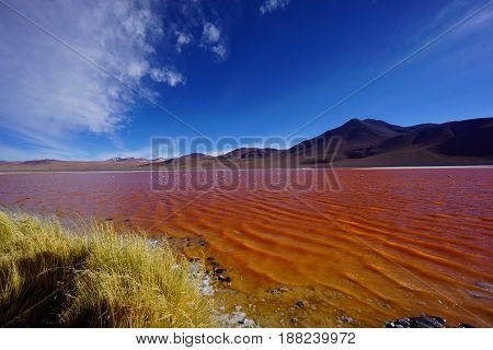 Landscape shot of highly contrasting colors.  Blue skies, red lake and black mountains. Color is completely natural! Southern Bolivia landscape