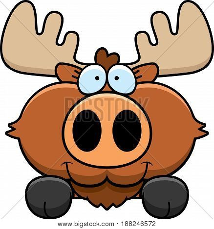 Cartoon Moose Peeking