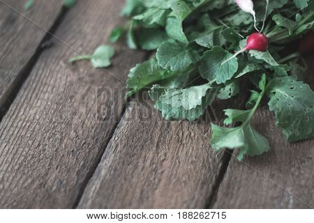 Radish fresh on a wooden background concept