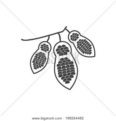 Cacao beans vector icons or cocoa pod signs