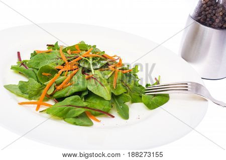 Vegetarian salad of carrots, chard and arugula. Studio Photo