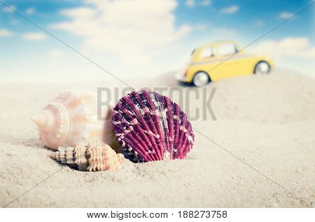 Shell On Sand With Yellow Car In Background.