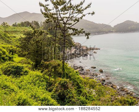Landscape of ocean shoreline with small mountains in the background and lush foliage in the foreground taken from cliff above the shoreline.