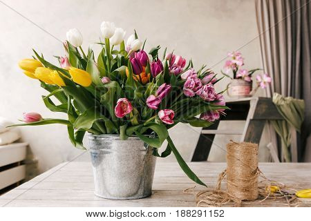 Tulip bouquet. Floristry workplace background. Colorful flowers, tools set in white interior. Preparation for the creation of bunch. Florist, decorator, diy, craftsmanship, spring gift concept