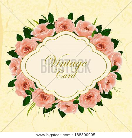 Beautiful vintage card with flowers. Vector illustration.