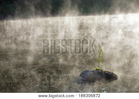Stone In Morning Misty Sunny River