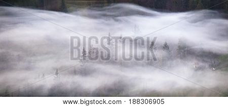 Waves Of Smoke In A Mountain Forest. Misty Morning Panorama.