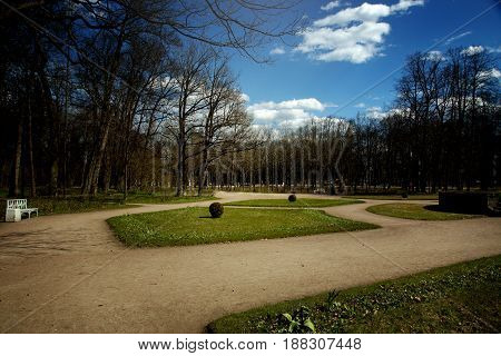 Flowerbeds and paths in the park in spring, bare trees and blue sky.