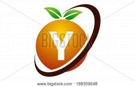 This image describe about Orange Fruit Letter Y