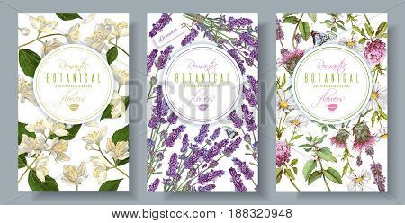 Vector vertical wild flowers and herbs banners. Design for herbal tea, natural cosmetics, perfume, health care products, aromatherapy. With place for text. Can be used as wedding, summer background