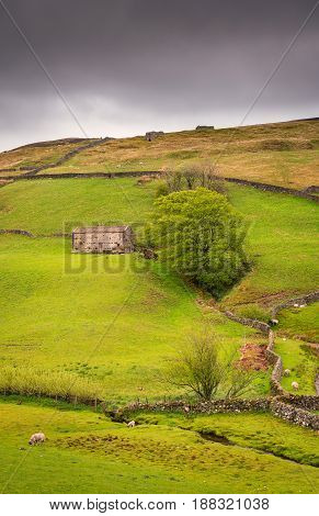 Field Barn in Upper Swaledale at Keld - Swaledale in Yorkshire Dales National Park winds into the northern Pennines. It is famous for its meadows field barns and drystone walls.