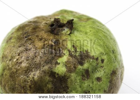 The rotten guava isolated on a white background.